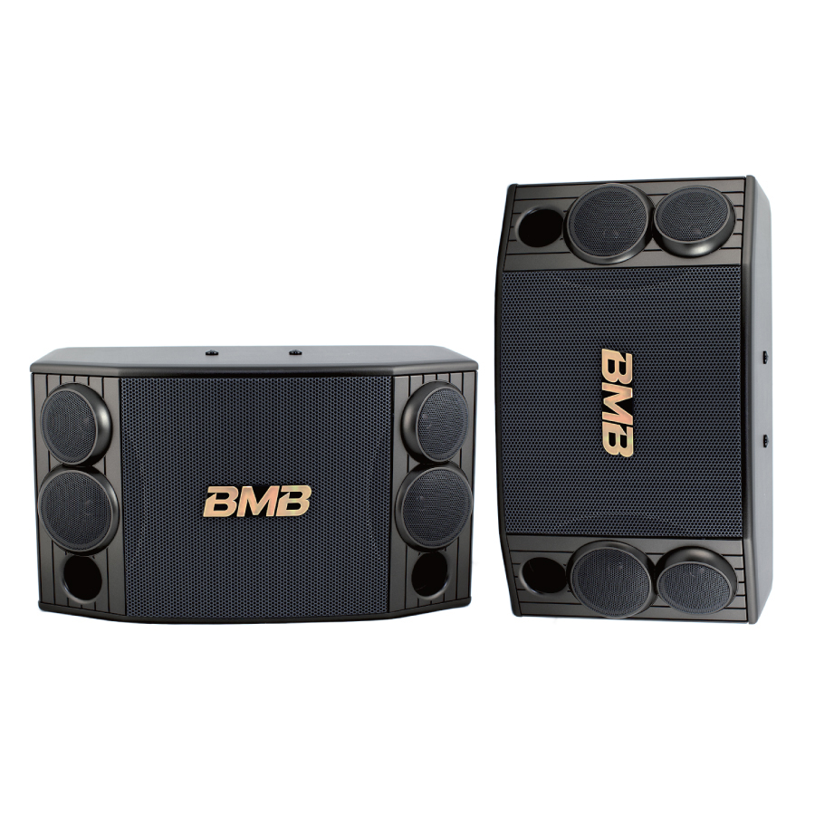 CSD-880 1000W 10″ High Power Karaoke Speakers
