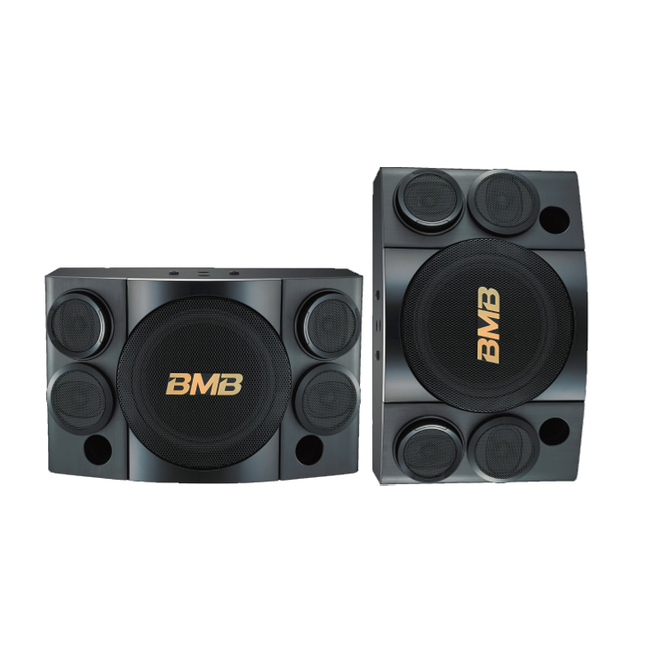 CSE-310 500W 3-Way Karaoke Speakers