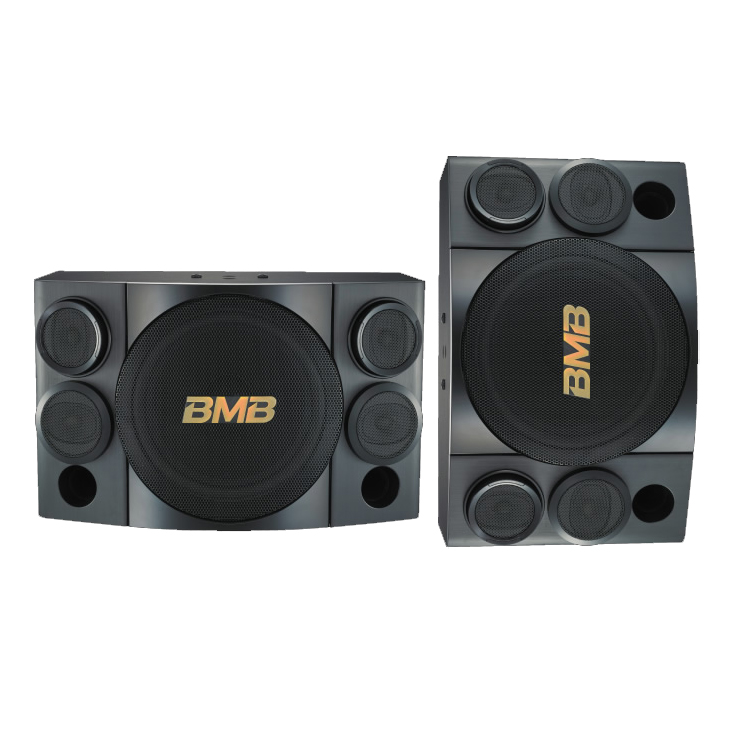 CSE-312 800W 3-Way Karaoke Speakers